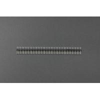 40 Pin Headers - Straight